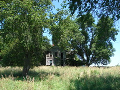 Raccoon House (David Sebben) Tags: roof abandoned grass farmhouse rural woodwork weeds view floor hill iowa porch raccoons muscatine decomposing
