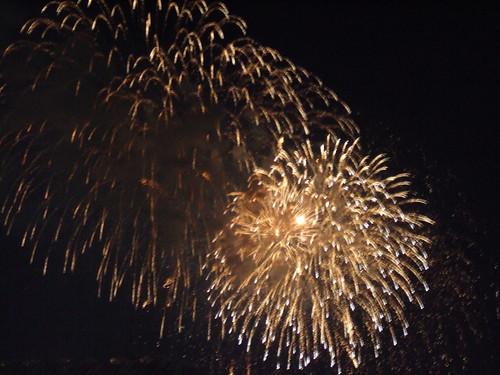 Washington, DC 2010 Fireworks