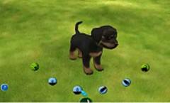Doggies demo – Para que los Más Pequeños Cuiden de sus Mascotas.