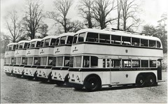AEL405..... (Alwyn Ladell) Tags: trolley omnibus trolleybus motorbus bournemouthcorporationtransportservices ael405