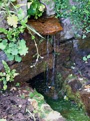 Fontaines du parc de La-Roche-Jagu -6- (Chti-breton) Tags: france jardin rivire fontaine chteau parc source ria ruisseau ctesdarmor estuaire trieux breatagne chateaufodal larochejagu plozal