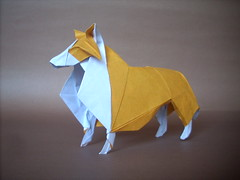 Collie ([~Nic]) Tags: dog collie origami perro nicolas gajardo henriquez
