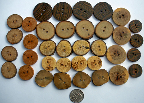 Wooden Treasures buttons 070910 (5)