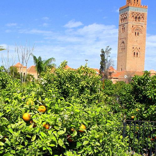 Marrakech - 32