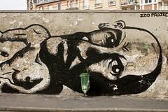 Zoo Project (dprezat) Tags: street urban streetart paris art painting stencil tag graf peinture aerosol bombe pochoir zooproject sonyalpha700