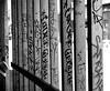 Hoarding found in Kensington Market ~ Toronto (Sally E J Hunter) Tags: toronto graffiti blackwhite noiretblanc tag hoarding kensingtonmarket moo1 topwkm