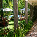 Asia - Philippines / Bohol Tropics Resort Club