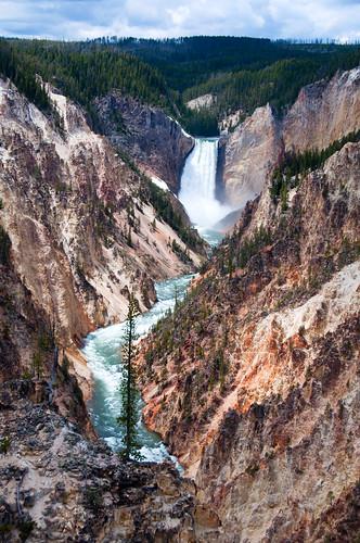 Yellowstone 39