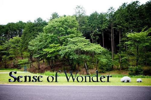 Sense of Wonder 2010