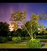 20080923_999_241b (Fantasyfan.) Tags: park longexposure autumn light sky plants nature topv111 tag3 taggedout night dark tag2 tag1 ainola matchpoint fantasyfanin