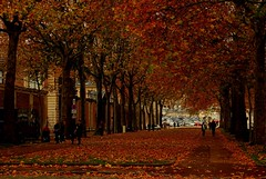 Autumn in Paris...