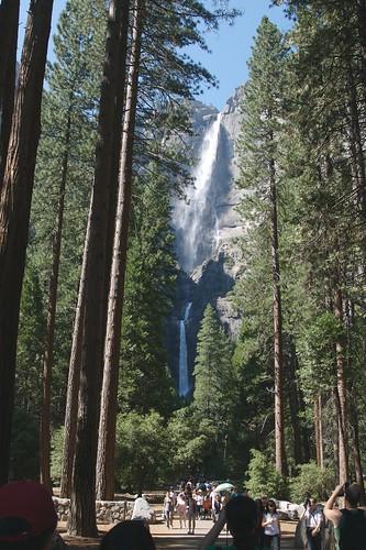 Yosemite N.P.
