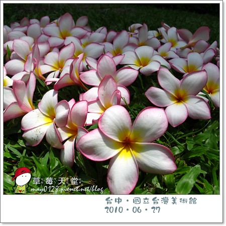 台中國美館87-2010.06.27
