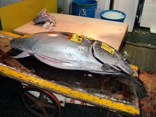 Tsukiji Ichiba: Tuna