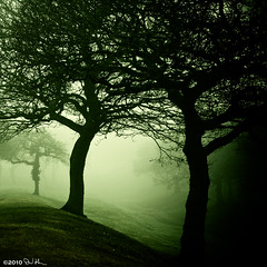 Dark winter woods - The Antonine Wall, Bonnybridge, UFO Hotspot v2 (David Hannah) Tags: trees winter mist hot cold green fog dark scotland woods darkness ditch forrest roman fort branches alien spot ufo erie trunks stark et hotspot falkirk bonnybridge darkie 40d welcomeuk