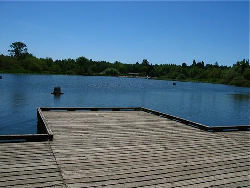 trout lake 001