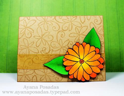 JudysBloom Orange (1)