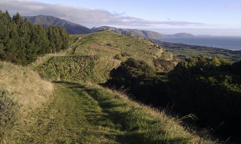 Mataihuka walkway