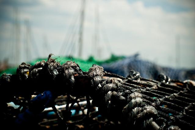 090710_ crab traps #1
