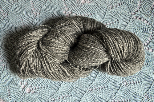 Shetland Yarn Skein 1