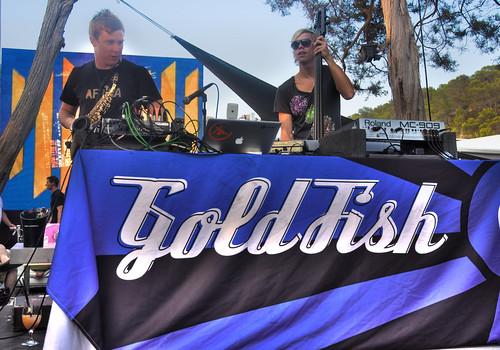 Goldfish at Blue Marlin Beach Club: 22/07/10