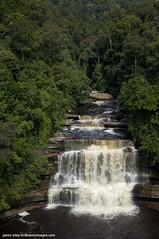 Maliau falls - top level