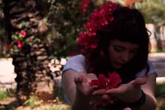 Tus pulmones me han proporcionado el aire que necesitaba (P. Mockingjay) Tags: pink red portrait flower macro girl face hair hand bokeh magenta palm elx elche redhaired