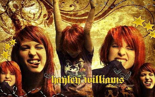 hayley williams wallpaper ignorance. hayley williams wallpaper