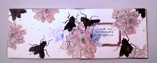 flies & text