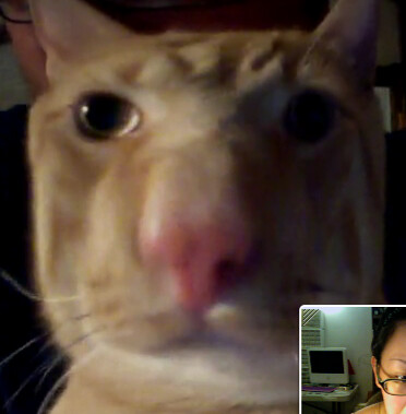 webcamming w/ buckley