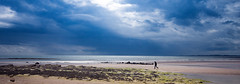 The Lonely Walk (Andrew Haynes Wildlife Images) Tags: storm beach nature northumberland northumbria canon40d ajh2008 amblebeach