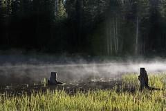 Morning mist. . . (CharleneM50) Tags: morning lake nature morninglight early spooky morningmist uintamountains wasatchmountainrange