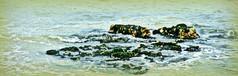 Reefage Crop Edit (MonochromeOptical) Tags: lido broadstairs vikingbay bathingpool chalkreef reefage lowtidebathing broadsatirskent cubicreef