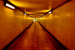 Subway (Stacey Price (Roxy_77)) Tags: city urban london underpass subway scary tube tiles harrybrown edgewareroad