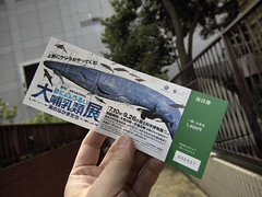 Tokyo 2010 - 國立科學博物館 (2)