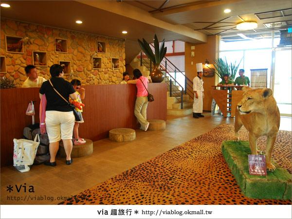 【新竹住宿】來去和動物住一晚~關西六福莊生態渡假旅館3