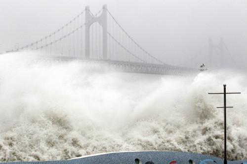 Typhoon Dianmu