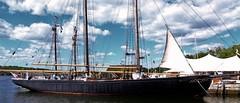 Untitled (Elaine Dickson Photographs) Tags: boat ship mystic seaport maritimemuseum sailingship