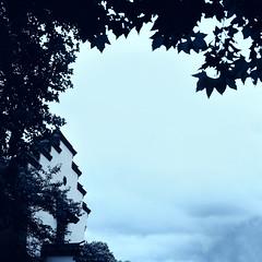 你的天空 (普渡众神 花) Tags: 120 6x6 ps80 碧浪