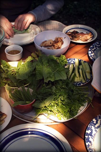 spring roll feast