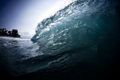 Empty Wave (coastalcreature) Tags: ocean hawaii surf oahu tube barrel wave surfing northshore