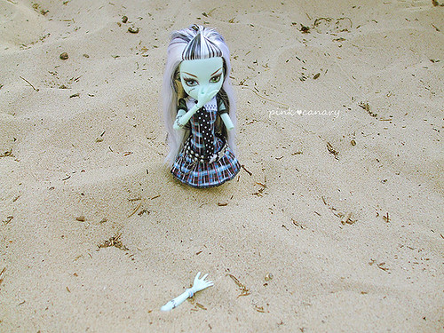 Lost in the sand!
