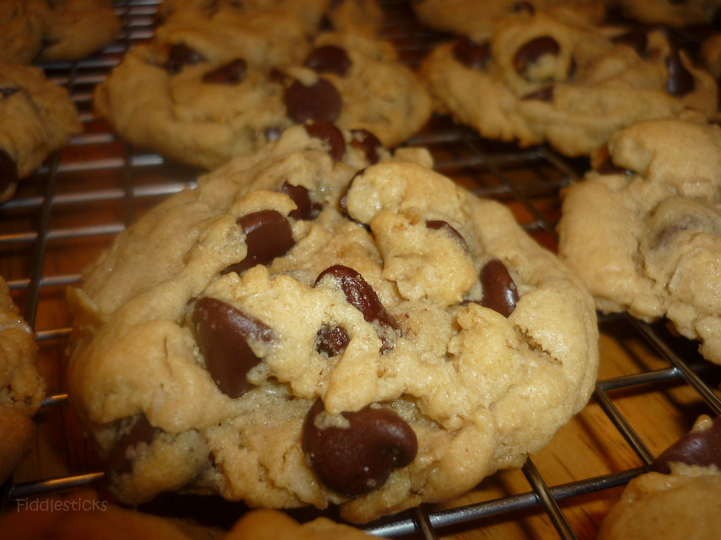 Peanut Butter Chocolate Chip Oatmeal Cookies!