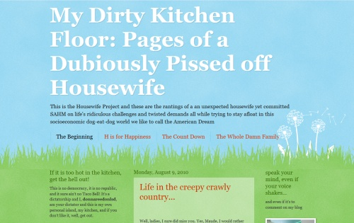 My Dirty Kitchen Floor: Pages of a Dubiously Pissed off Housewife