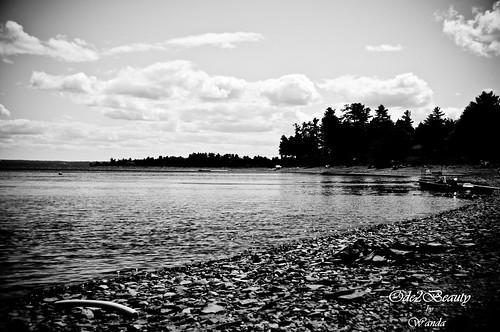 Freddy Beach 2010 298-2