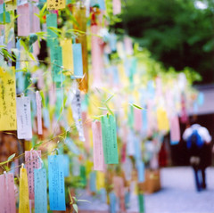 Wish (mie**) Tags: love smile japan hope kyoto warm soft peace heart kodakportra400vc  wish breeze carlzeiss  hasselblad503cw planar2880