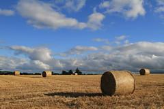 A Baleful Look (Chris*Bolton) Tags: ireland sky sun field clouds evening harvest bales wicklow soe rathdrum bej golddragon mywinners platinumphoto anawesomeshot theperfectphotographer goldstaraward