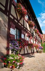 Nuremberg Castle flowerboxes
