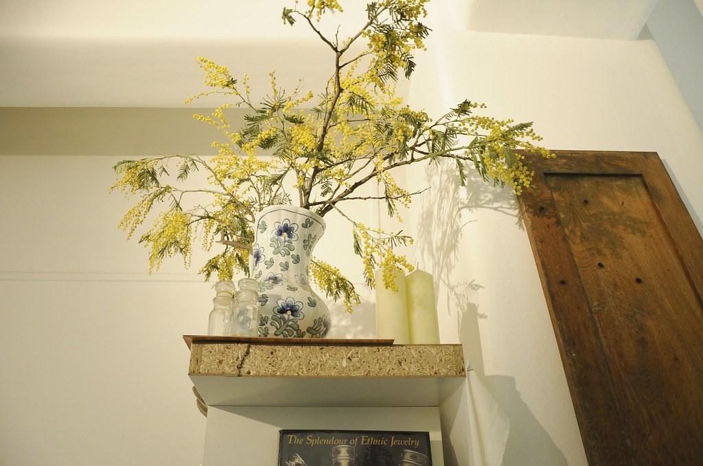 Studio flowers