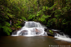 Mantadia Waterfall (Burrard-Lucas Wildlife Photography) Tags: river waterfall rainforest jungle madagascar mantadia viaflickrqcom
